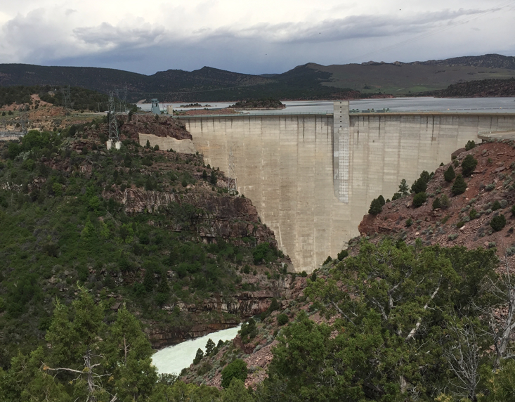 The Ecological Importance of Dams