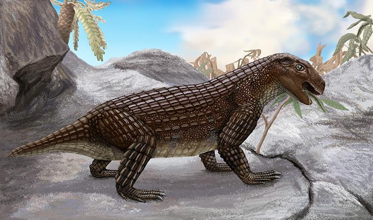 07b168a01 Labrador of the dinosaur world  An artist s rendering of Simosuchus clarki